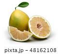 かんきつ類 シトラスフルーツ 柑橘系フルーツの写真 48162108