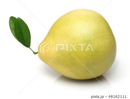 Fresh pomelo fruit isolated on white 48162111
