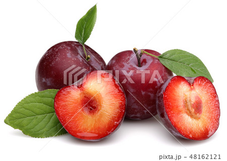 Red plums with leaf isolated on white 48162121