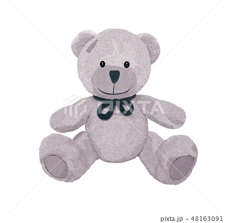 Beautiful gray teddy bear with a bow and patch 48163091