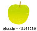 りんご 果物 林檎のイラスト 48168239