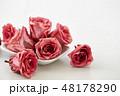 バラ 花 お花の写真 48178290