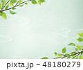 新緑 フレーム 若葉のイラスト 48180279