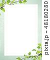フレーム 新緑 若葉のイラスト 48180280