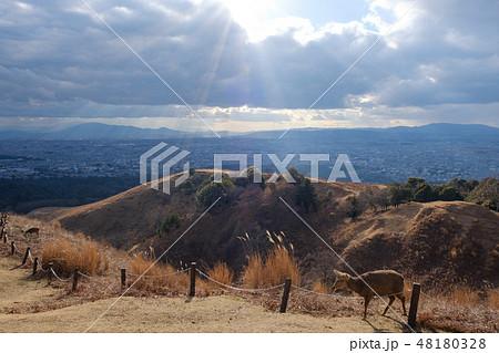 若草山から見た奈良の町 光芒 天使のはしご 48180328