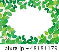新緑 春 葉のイラスト 48181179
