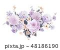 透明水彩 水彩画 花のイラスト 48186190