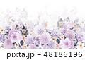 透明水彩 水彩画 花のイラスト 48186196