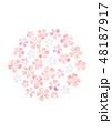 桜 春 花のイラスト 48187917