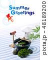 暑中見舞い 日本庭園 金魚のイラスト 48189200