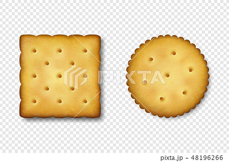 Realistic Vector 3d Round and Square Delicious Salty Cookies Rustic, Cracker, Biscuit Icon Set 48196266
