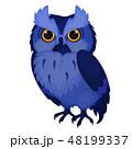 鳥 ドローイング 絵のイラスト 48199337