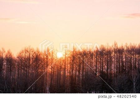 早朝の風景 48202540