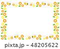 ミツバチとマーガレットのフレームイラスト 48205622