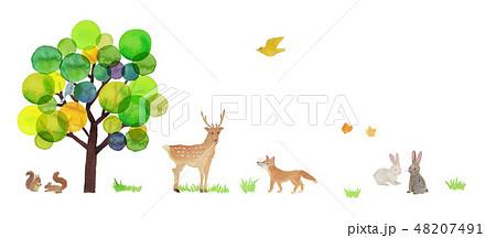 tree & animals watercolor 48207491