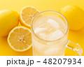 レモンサワー 48207934