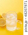レモンサワー 48207971