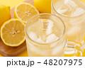 レモンサワー 48207975