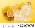 レモンサワー 48207976