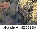 滝 48208988