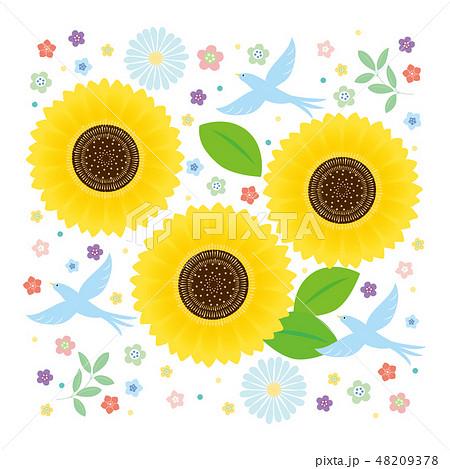 カット素材-夏の花,鳥5 48209378