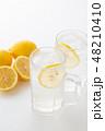 レモンサワー 48210410