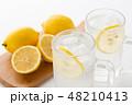レモンサワー 48210413