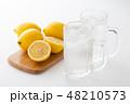 レモンサワー 48210573