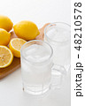 レモンサワー 48210578