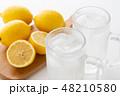 レモンサワー 48210580