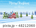 クリスマス あいさつ グリーティングのイラスト 48212060