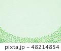 葉 背景素材 新緑のイラスト 48214854