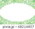 葉 フレーム 新緑のイラスト 48214857