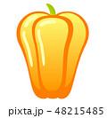 黄色いパプリカ 48215485