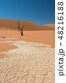 ナミビア ナミブ砂漠 死の沼 デッドフレイ 48216188
