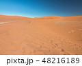 ナミビア ナミブ砂漠 48216189