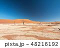 ナミビア ナミブ砂漠 死の沼 デッドフレイ 48216192