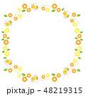ミツバチとマーガレットの花の丸いフレームのイラスト 48219315