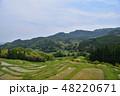 山 水田 米の写真 48220671