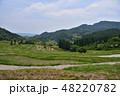 山 水田 米の写真 48220782
