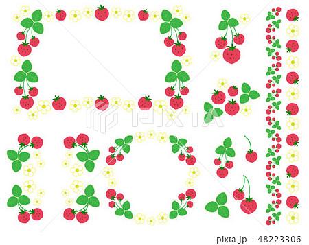 いちごと花と葉っぱの素材セット 48223306