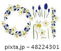 背景 花 コレクションのイラスト 48224301