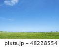 草原と青空 48228554