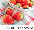 苺 果物 フルーツの写真 48228918
