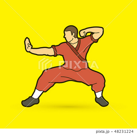 Kung fu action ready to fight graphic vector 48231224