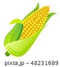トウモロコシ 48231689