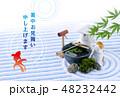 暑中見舞い 日本庭園 金魚のイラスト 48232442