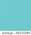 ベクター 和 京文様のイラスト 48233380