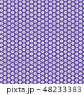 ベクター 和 京文様のイラスト 48233383