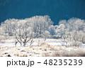樹氷 シカ エゾシカの写真 48235239